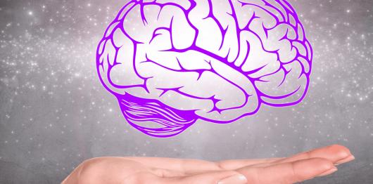 Brain-above-Hand-Web-Op-1024x801